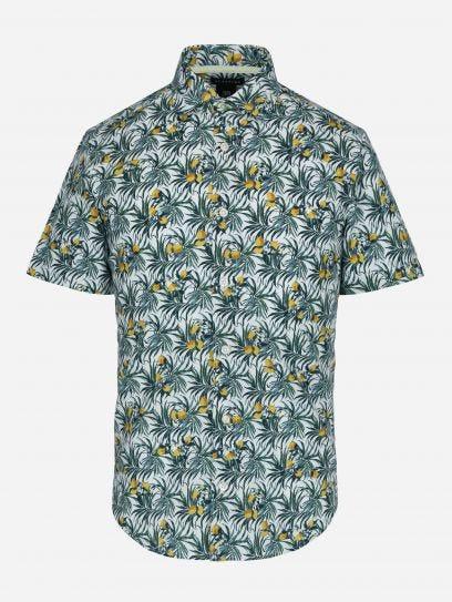 Camisa Casual Fruit Naranja VERDE MEDIO CH